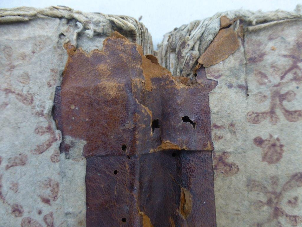 10) Ergänzungen und Stabilisierung von Leder, Pappe und Überzug (Prozess)